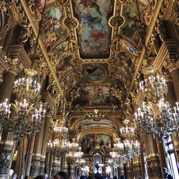 Better than the Hall of Mirrors!! , Holly D - November 2015