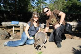 During our Australian Experience at Taronga Zoo in Sydney we were able to feed a wallaby and take pictures with her!, Brandon B - May 2009