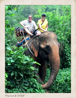 After we rode through the water, the driver let me pilot this beast for the rest of the ride...about 30 minutes of elephant ears flapping at my legs. So fun! , MICHELLE PRICE P - March 2015