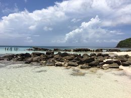 Great snorkeling around this rocky part of the beach , Erik T - June 2016