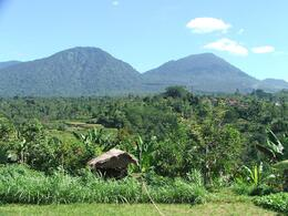 This is one of the great views we saw! You can see the rice paddies to the left of the picture., Gail F - July 2009