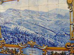 Photo of Porto & Northern Portugal Day Trip to Douro Azulejos all over Portugal