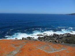 Photo of Adelaide Kangaroo Island in a Day Tour from Adelaide SAM_4691
