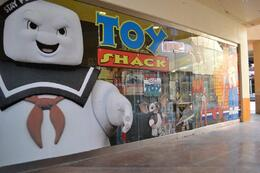 Photo of Las Vegas Pawn Stars Tour of Las Vegas The Toy Shack