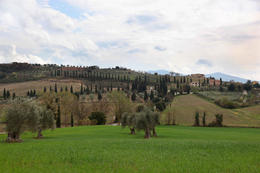 Tuscany in One Day Sightseeing Tour from Rome - April 2012