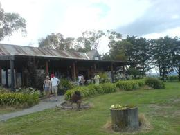 Photo of Melbourne Yarra Valley Wine and Winery Tour from Melbourne Yering Farm