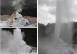 Photo of   Lady Knox Geyser