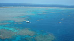 Photo of Cairns & the Tropical North Great Barrier Reef Diving and Snorkeling Cruise from Cairns SAM_4621