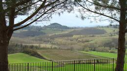 Photo of Florence Tuscany in One Day Sightseeing Tour Chianti Countryside
