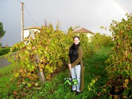 In the Vineyard!, Sara-Jean L - November 2008