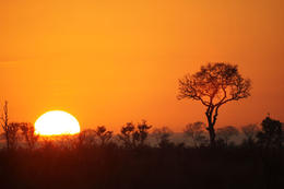 A dramatic sunrise in South Africa's Kruger National Park - May 2011