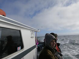 On whale watch!, Trina Tron - April 2013