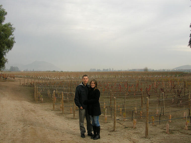 Concha y Toro vineyards - Santiago
