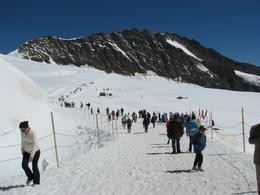 Top of Europe: outside looking for the dog sled rides. - September 2008