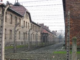 Photo of Krakow Auschwitz-Birkenau Museum Half-Day Trip from Krakow Another view of Security fence around Auschwitz  Camp 1