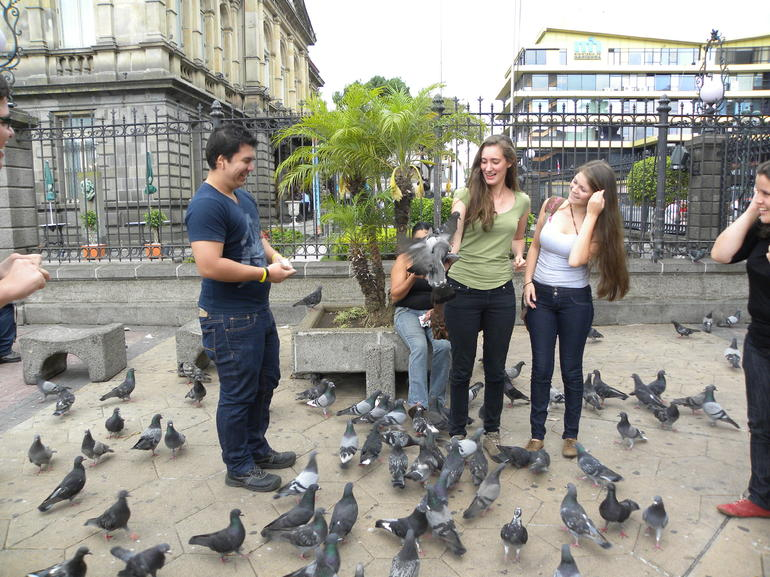 Pigeons being fed outside Teatro Nacional at Plaza De La Cultura