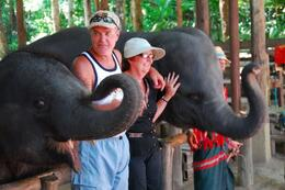 Making new friends with the elephants., Jeff - May 2008