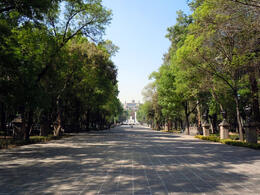 Photo of   The Promenade of Chapultepec