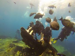 Scuba Diving in Bali , Diwaker K - November 2015