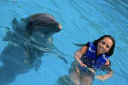Photo of Los Cabos Swim with the Dolphins in Cabo San Lucas Cute Dolphin