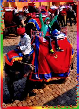 My son and wife riding an elephant to the Amber Fort entrance. , Darrell C - January 2014