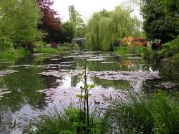 lake at Giverny - May 2010
