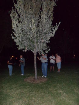 Photo of Las Vegas Haunted Vegas Tour and Ghost Hunt Haunted Grave Marker with Ghost Orbs