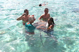 Photo of Bora Bora Bora Bora Snorkel, Shark and Ray Feeding Excursion IMG_6402.JPG