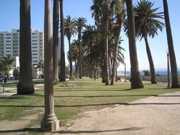 Attractions in Los Angeles Tours