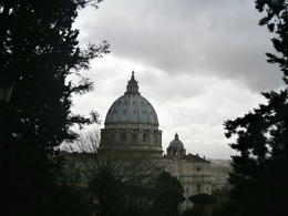 Photo of Rome Vatican Gardens and Vatican Museums Tour View of St Peter's Basillica from the gardens