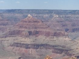 Several stops and plenty of time at the Canyon , Denise C - July 2015