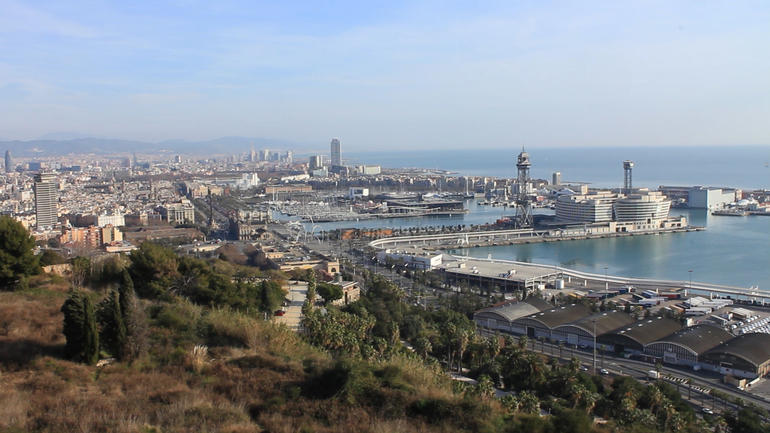 Barcelona Morning Sightseeing Tour - Barcelona