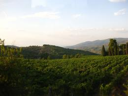 Photo of Florence Chianti Region Wine-Tasting and Dinner Half-Day Trip from Florence Countryside