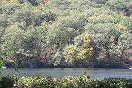 Photo of New York City Circle Line: Bear Mountain Full-Day Cruise Lake view, near picnic area