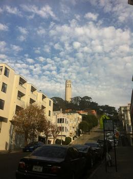 Coit Tower - we learned all about its history, Laura All Over - December 2013