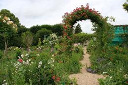 Just a small taste of the beautiful gardens at Giverny., Veronica G - June 2010