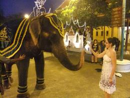 Meet this royal elephant outside the theater., Fernando Camarate Santos - April 2013