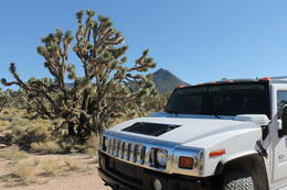Photo of Las Vegas Grand Canyon in a Day: Hummer Tour from Las Vegas Grand Canyon by Hummer