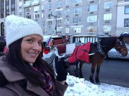 Photo of New York City Private Horse and Carriage Ride in Central Park Horse  and  Carriage 1