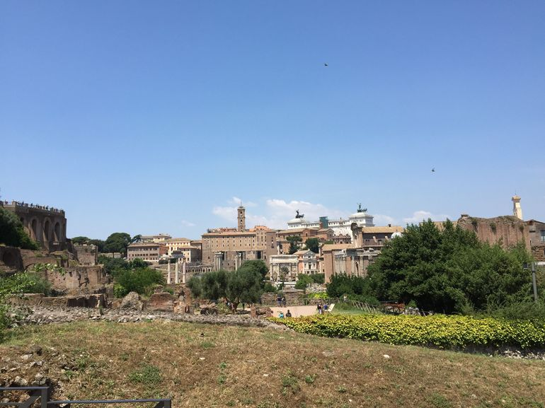 Rome Super Saver: Colosseum and Ancient Rome with Best of Rome Afternoon Walking Tour photo 25