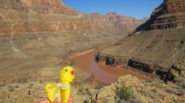 Picnic near the base of the Grand Canyon, the chicken came along in our backpack. , Graham R - September 2013
