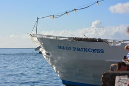 This is the wonderful Maui Princess at the dock just as we were boarding for the dinner cruise. , lindamtracy - April 2015