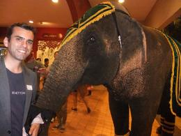 Me and elephant, Fernando Camarate Santos - April 2013