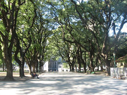 Beautiful park in the center of the city., Bandit - June 2012