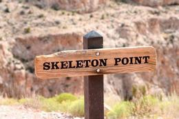 We hiked to Skeleton Point-wow!, Rachel - October 2012