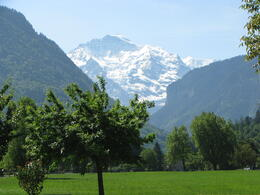 Photo of Zurich Jungfraujoch: Top of Europe Day Trip from Zurich in Interlaken
