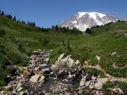 Photo of Seattle Mt Rainier Day Tour from Seattle Paradise