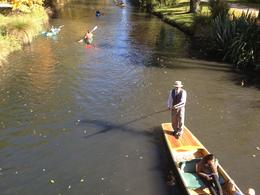 Punting on the Avon River, Cat - April 2013