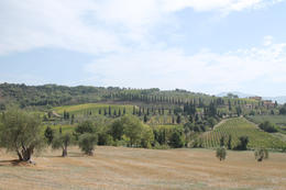 Photo of Rome Tuscany in One Day Sightseeing Tour from Rome Tuscan view
