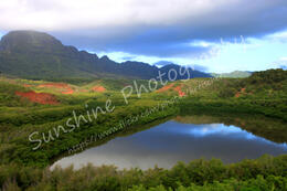 Photo of Kauai Small-Group Kauai Tour Including Waimea Canyon, Poipu and Koloa Fish Pond